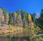 Autumn landscape with the river, the forest and the blue sky Royalty Free Stock Image