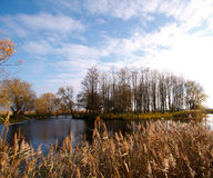Autumn landscape with a river and grass Stock Images