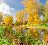Autumn landscape with the river in the park Stock Photo