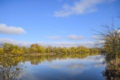 Autumn Landscape Rivier en rivierbank met gele bomen Wilg en populier op de rivierbank Stock Foto