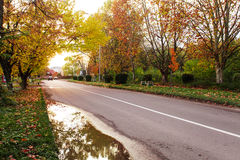 Autumn landscape with road Royalty Free Stock Photos