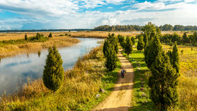Autumn landscape of road Royalty Free Stock Photography