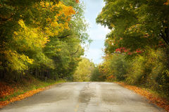 Autumn landscape with road and beautiful colored trees Stock Photography