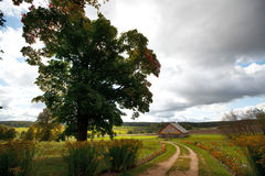 Autumn landscape with a road. And house Stock Images
