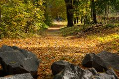 Autumn landscape: the road, the stones Royalty Free Stock Images