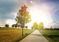 Autumn Landscape with Road. Sun and Tree stock photo