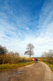 Autumn landscape with a road. And tree Royalty Free Stock Photo