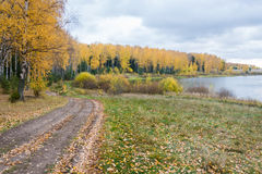 Autumn landscape. Road, which runs between the river and birch forest, dressed in yellow leaves of autumn stock photos