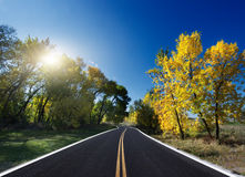 Autumn Landscape. road Stock Photography