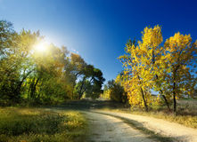 Autumn Landscape. road Royalty Free Stock Images