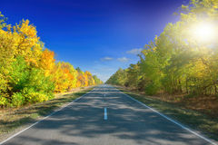 Autumn Landscape. road Royalty Free Stock Photo