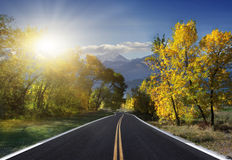 Autumn Landscape. road. Road in Autumn woods with colorful foliage tree in rural area Royalty Free Stock Photo