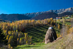 Autumn landscape in Romania royalty free stock images