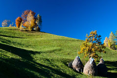 Autumn landscape in Romania Royalty Free Stock Photo