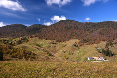 Autumn landscape in Romania Stock Image