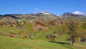 Autumn landscape in Romania Stock Photos