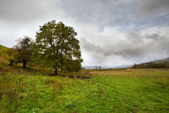 Autumn landscape of rural location Stock Photo