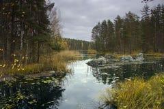 Autumn landscape, Russia Stock Images