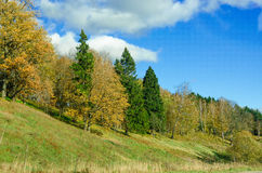 Autumn landscape of the Russian forest. On the hills Stock Photo