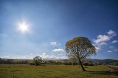 Autumn landscape. In Santimbru, Harghita county, Romania Royalty Free Stock Photo