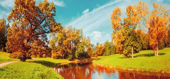 Autumn landscape scene - autumn trees near the river in sunny October park lit by sunlight, vintage tones. Autumn landscape scene - autumn trees near the river stock image