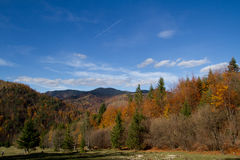 Autumn landscape. Autumn scene in the mountains Royalty Free Stock Images