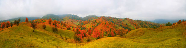 Autumn landscape with scenic colorful view of meadows and trees Royalty Free Stock Photo