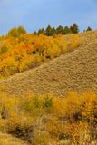 Autumn Landscape scenico nel Tetons fotografia stock