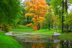 Autumn landscape and shaky bridge in Alexander Park Royalty Free Stock Images