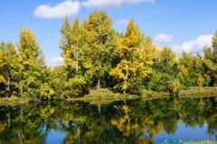 Autumn Landscape. Siberia, golden autumn - 2013 in Khakassia Royalty Free Stock Photos