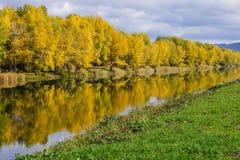 Autumn Landscape. Siberia, golden autumn - 2013 in Khakassia Royalty Free Stock Photography