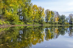 Autumn landscape on the Siberian river. The Chaus river  a tributary of the Ob river ,Kolyvan district, Novosibirsk oblast, Siberia, Russia Royalty Free Stock Photo