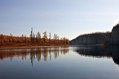 Larch taiga in September on the banks of the river. Autumn landscape on the Siberian river. Larch taiga in September on the banks of the river and in Evenkia Stock Images