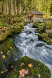Autumn landscape with small waterfall Royalty Free Stock Photo