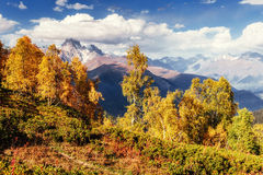 Autumn landscape and snow-capped mountain peaks. View of the mou Royalty Free Stock Images
