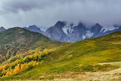 Autumn landscape and snowy mountain peaks. Birch forest in sunlight. Main Caucasian Ridge. Mountain View from Mount. Ushba Mheyer, Georgia. Europe Stock Images