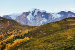 Autumn landscape and snowy mountain peaks. View of the mountain Stock Photos