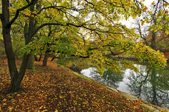 Autumn landscape in South Sweden. Autumn landscape in South Sweden Stock Photography