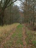 Autumn landscape, southern Bohemia. Czech Republic Royalty Free Stock Photography
