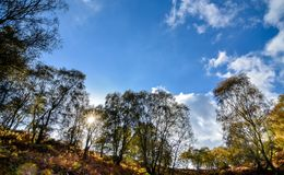Autumn Landscape in Staffordshire, Engeland Royalty-vrije Stock Afbeelding