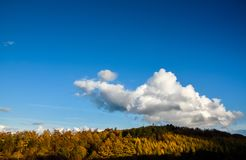 Autumn Landscape in Staffordshire, England. A beautiful autumn landscape lookng across Cannock Chase Area of Outstanding Natural Beauty Royalty Free Stock Photography