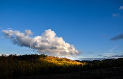 Autumn Landscape in Staffordshire, England. A beautiful autumn landscape lookng across Cannock Chase Area of Outstanding Natural Beauty Royalty Free Stock Image
