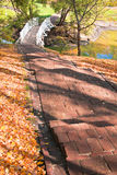 Autumn landscape with stairs, bridge and pond Stock Photos