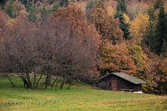 Autumn landscape in Stiavnica mountains with wooden chalet covered with fallen leaves Stock Photos