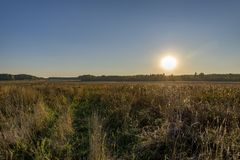 Autumn landscape. The sun down near the horizon over a grassy field on an autumn day Royalty Free Stock Image