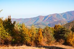 Autumn landscape on sunny day. Cindrel mountains, Sibiu county, Romania royalty free stock image