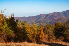 Autumn landscape on sunny day. Cindrel mountains, Sibiu county, Romania royalty free stock photography