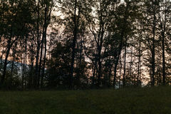 Autumn Landscape with Sunrise - Sunset and Sun Light on Tree Royalty Free Stock Photos