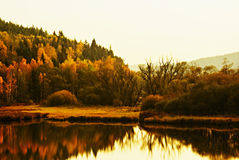 Autumn landscape at sunset royalty free stock images