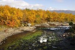 Autumn landscape in Sweden Stock Photos